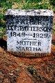 "Martha A ""Mattie"" <I>Lewis</I> Patterson"