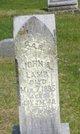 John Alexander Lamb