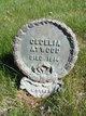 Profile photo:  Arrilla Cecelia <I>Law</I> Atwood