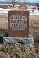 Profile photo:  Allie Jane <I>Coffman</I> Martin