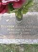 Brenden James Gothia