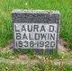 Laura D Baldwin