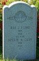 Ray Julius Flint