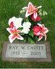 "Profile photo:  William Ray ""Ray"" Cavitt"