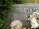 Katy J Ashmore