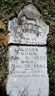 James M. Alcorn