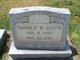 Harold N Allen