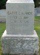 Carrie E. Vanhoy