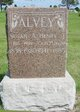 Profile photo:  Henry James Alvey