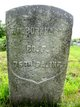 Pvt William B Burkhart