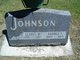George F Johnson