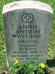 Profile photo:  Annie Antrim Wayland