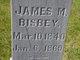 James Monroe Bisbey, Jr
