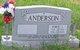 Robert Lamar Anderson