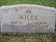 Abraham Washington Wiles