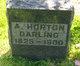 Profile photo:  A Horton Darling