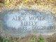 Profile photo:  Alice Virginia <I>Moser</I> Birely