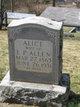 Profile photo:  Alice Allen