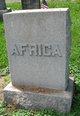 Pvt Henry L. Africa