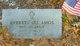 Everett Lee Amos