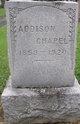 Profile photo:  Addison Chapel