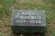 Alice <I>Norton</I> Pulhemus