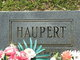 George Haupert