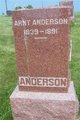 "Arnt ""Andrew"" Anderson"