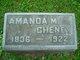 Profile photo:  Amanda M. Cheney