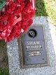 Richard Bernard Shaw
