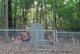 Starnes Family Cemetery