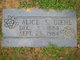 Profile photo:  Alice Evelyn <I>Stover</I> Diehl