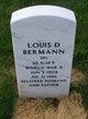 Profile photo:  Louis D. Bermann