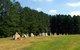 Mary Elizabeth Baptist Church Cemetery