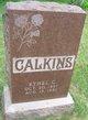 Ethel Carrie Calkins