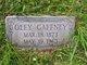 Profile photo:  Oley V Gaffney