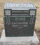 Catharine Bachtel <I>Overholt</I> Stewart