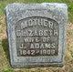 Profile photo:  Elizabeth <I>Chapman</I> Adams
