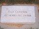 Ella Catherine <I>Hayes</I> Will