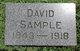 David Sample