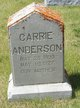 Profile photo:  Carrie Anderson