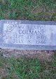 William Henry Colman