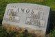 Sam Amos
