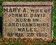Profile photo:  Mary Ann <I>Griffith</I> Davis