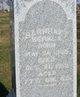 Barnhart Berkla