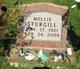 Mollie Sturgill