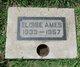 Eloise Geneva <I>Dooley</I> Ames