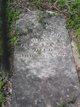 William Madison Scallorn