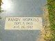 Randy James Hopkins