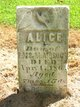 Profile photo:  Alice Brock